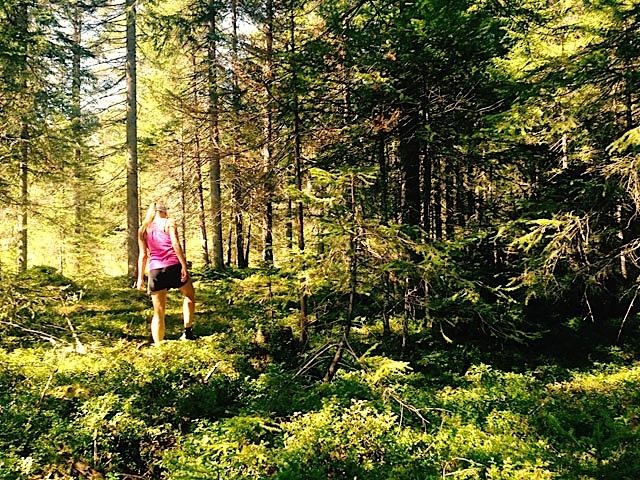 Wellness Wandern in Seefelda
