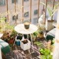 Gaertnern in der Grosstadt Tipps Balkon
