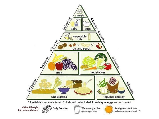 Kalorien zählen abnehmen