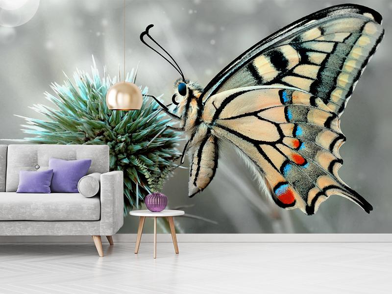 Fototapete Schmetterling Palmen Monstera